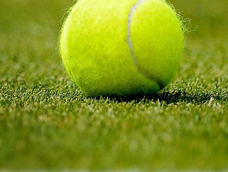 Cỏ sân tennis